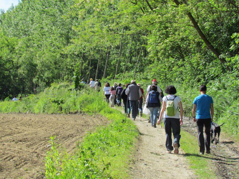 Camminare nella natura